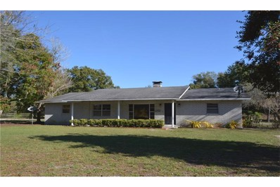 4350 Lake Buffum Road E, Fort Meade, FL 33841 - #: P4713728
