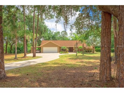 200 Old Spanish Way, Winter Haven, FL 33884 - #: P4715174
