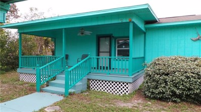 3814 Lake Ellen Drive, Haines City, FL 33844 - #: P4719523