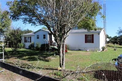 3500 LAKE BUFFUM Road E, Fort Meade, FL 33841 - #: P4908250