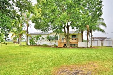 1750 LAKE BUFFUM Road E, Fort Meade, FL 33841 - #: P4911379