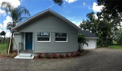 4932 Dora Drive, Mount Dora, FL 32757 - #: R4900624