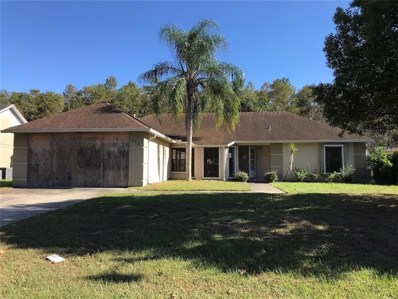 228 Red Maple Drive, Kissimmee, FL 34743 - #: S5009783