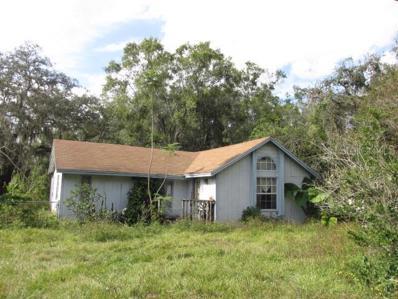 1634 Lime Street, Kissimmee, FL 34746 - #: S5010495