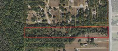 7117 S County Line Road, Plant City, FL 33567 - #: T2913993
