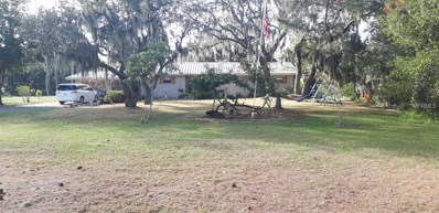 10909 County Road 672, Riverview, FL 33579 - #: T2916251