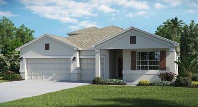1713 Snapper Street, Saint Cloud, FL 34771 - #: T2927405