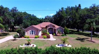 3111 Sam Hicks Road, Plant City, FL 33567 - #: T3102305
