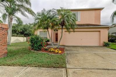 11602 Fox Creek Drive, Tampa, FL 33635 - #: T3109143