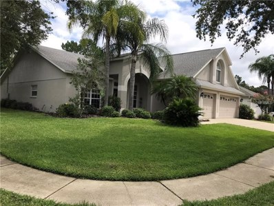 10202 Thicket Point Way, Tampa, FL 33647 - #: T3109655
