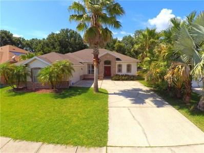 23203 Emerson Way, Land O Lakes, FL 34639 - #: T3112322