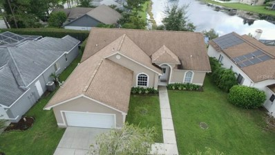 26010 Buckthorn Avenue, Land O Lakes, FL 34639 - #: T3112947
