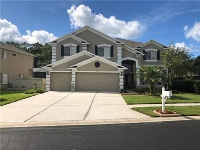 4626 Balsam Drive, Land O Lakes, FL 34639 - #: T3113019