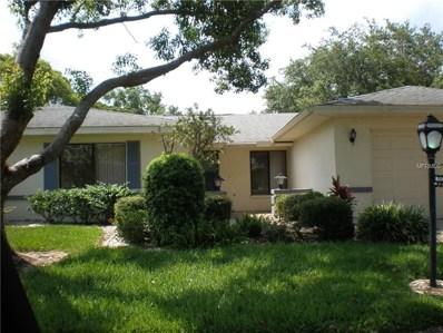 1537 Ingram Drive UNIT 91, Sun City Center, FL 33573 - #: T3113818