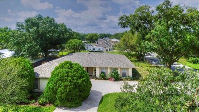 22332 Shoreside Drive, Land O Lakes, FL 34639 - #: T3114633