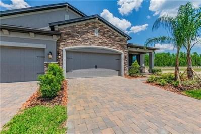 19352 Hawk Valley Drive, Tampa, FL 33647 - #: T3120378