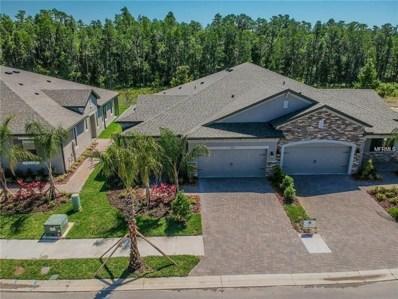 19351 Hawk Valley Drive, Tampa, FL 33647 - #: T3120380