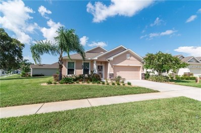 11205 Kiskadee Circle, New Port Richey, FL 34654 - #: T3120857