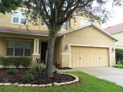 7243 Bridgeview Drive, Wesley Chapel, FL 33545 - #: T3121586