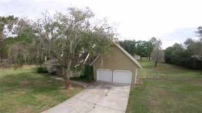 6080 Country Club Drive, Wesley Chapel, FL 33544 - #: T3124532
