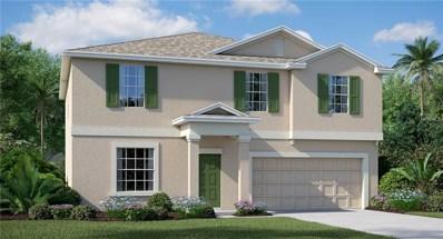 4105 Globe Thistle Drive, Tampa, FL 33619 - #: T3124959