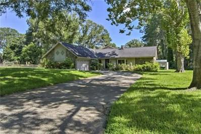1321 Anglers Lane, Lutz, FL 33548 - #: T3125452