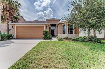 8311 Deerland Bluff Lane, Riverview, FL 33578 - #: T3128624