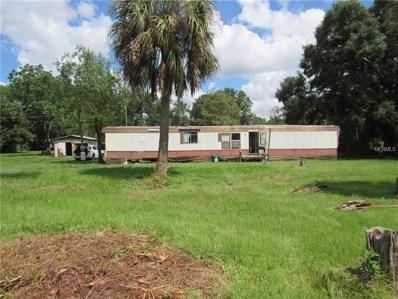 26747 Dayflower Boulevard, Wesley Chapel, FL 33544 - #: T3129203