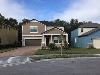 31079 Kelmin Terrace, Wesley Chapel, FL 33543 - #: T3129761