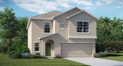 11125 Hudson Hills Lane, Riverview, FL 33579 - #: T3130020