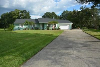 22500 Shoreside Drive, Land O Lakes, FL 34639 - #: T3130030