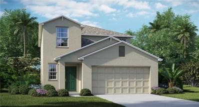 11117 Hudson Hills Lane, Riverview, FL 33579 - #: T3130053