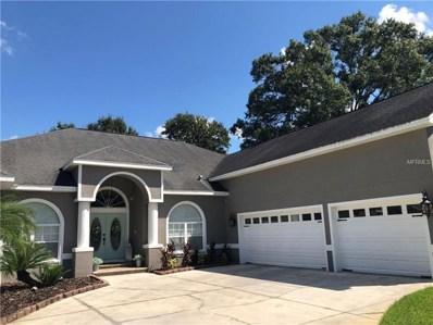 22535 Stillwood Drive, Land O Lakes, FL 34639 - #: T3130423
