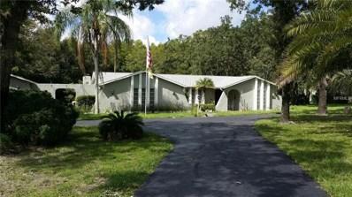 10321 Wood Duck Drive, New Port Richey, FL 34654 - #: T3130575