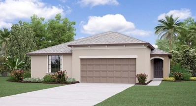 3294 Moulden Hollow Drive, Zephyrhills, FL 33540 - #: T3130620