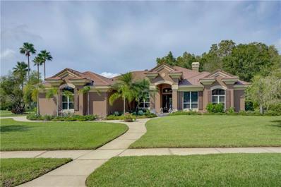 11902 Marblehead Drive, Tampa, FL 33626 - #: T3131804