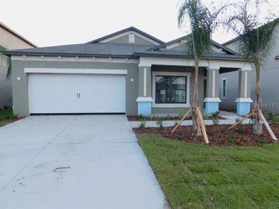 11425 Amapola Bloom Court, Riverview, FL 33579 - #: T3131873