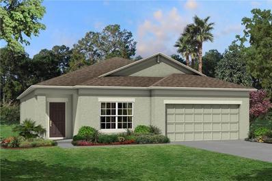11426 Amapola Bloom Court, Riverview, FL 33579 - #: T3131875