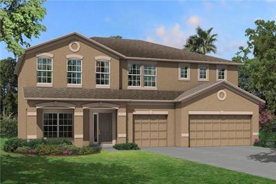 11419 Carlton Fields Drive, Riverview, FL 33579 - #: T3132142