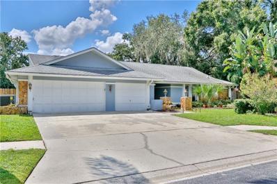 3900 Belmoor Drive, Palm Harbor, FL 34685 - #: T3132375