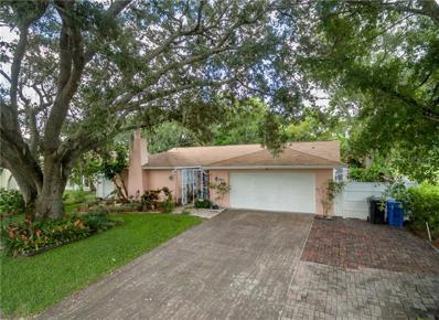 7401 Armand Drive, Tampa, FL 33634 - #: T3132399