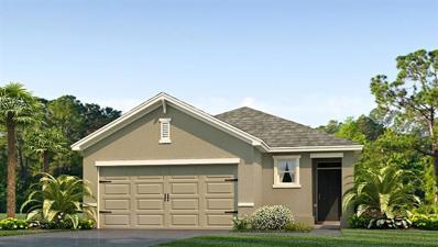 10220 Mangrove Well Road, Sun City Center, FL 33573 - #: T3132567