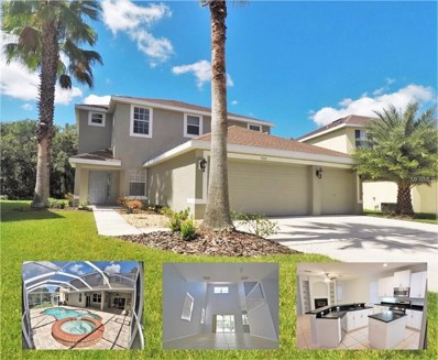 9317 Mandrake Court, Tampa, FL 33647 - #: T3132830