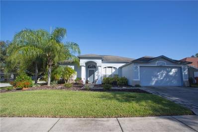 22411 Willow Lakes Dr, Lutz, FL 33549 - #: T3133362