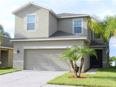 1116 Seminole Sky Drive, Ruskin, FL 33570 - #: T3133904