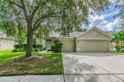 9468 Hunters Pond Drive, Tampa, FL 33647 - #: T3134376