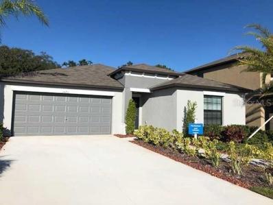 14211 Arbor Pines Drive, Riverview, FL 33579 - #: T3134742