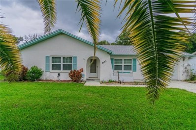 7043 Carmel Avenue, New Port Richey, FL 34655 - #: T3135721