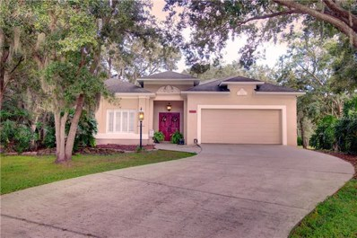 10404 Kankakee Lane, Riverview, FL 33569 - #: T3135882