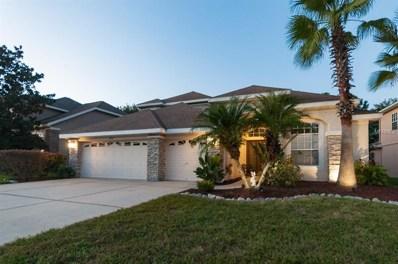 23517 Vistamar Court, Land O Lakes, FL 34639 - #: T3136326